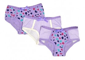 3pk Knickers – Purple Cheetah Last One 2-3 $15